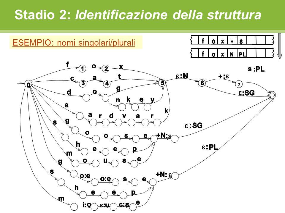 Stadio 2: Identificazione della struttura ESEMPIO: nomi singolari/plurali