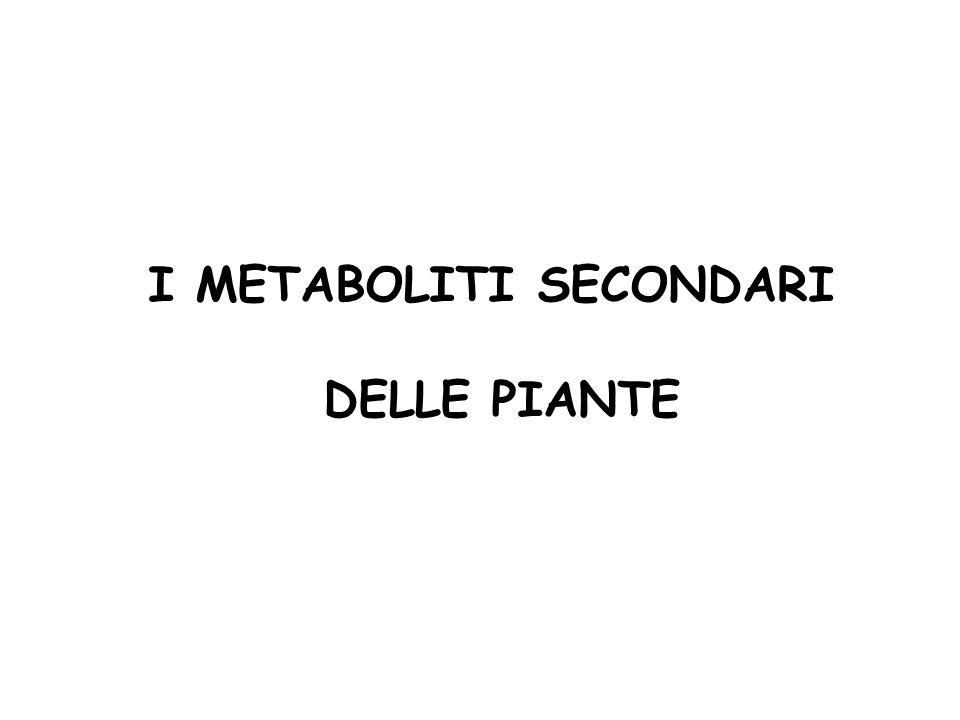 I METABOLITI SECONDARI DELLE PIANTE