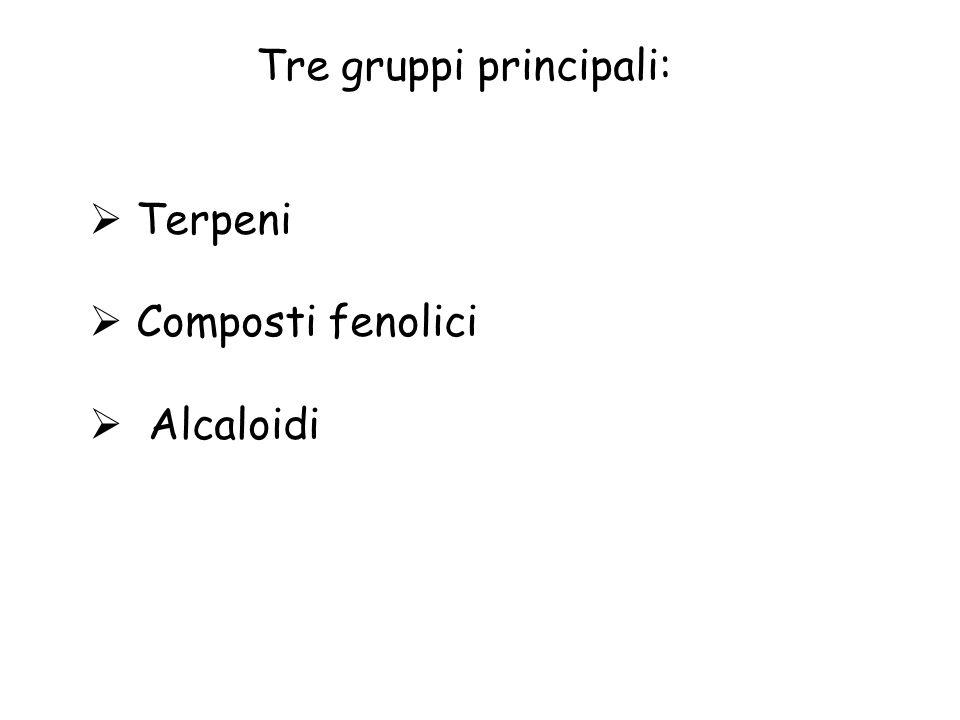 Tre gruppi principali: Terpeni Composti fenolici Alcaloidi