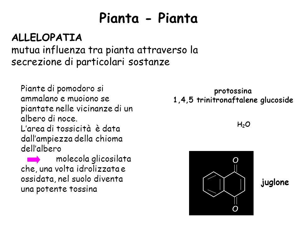 C6C3-C6 Flavonoidi C6C3-C6