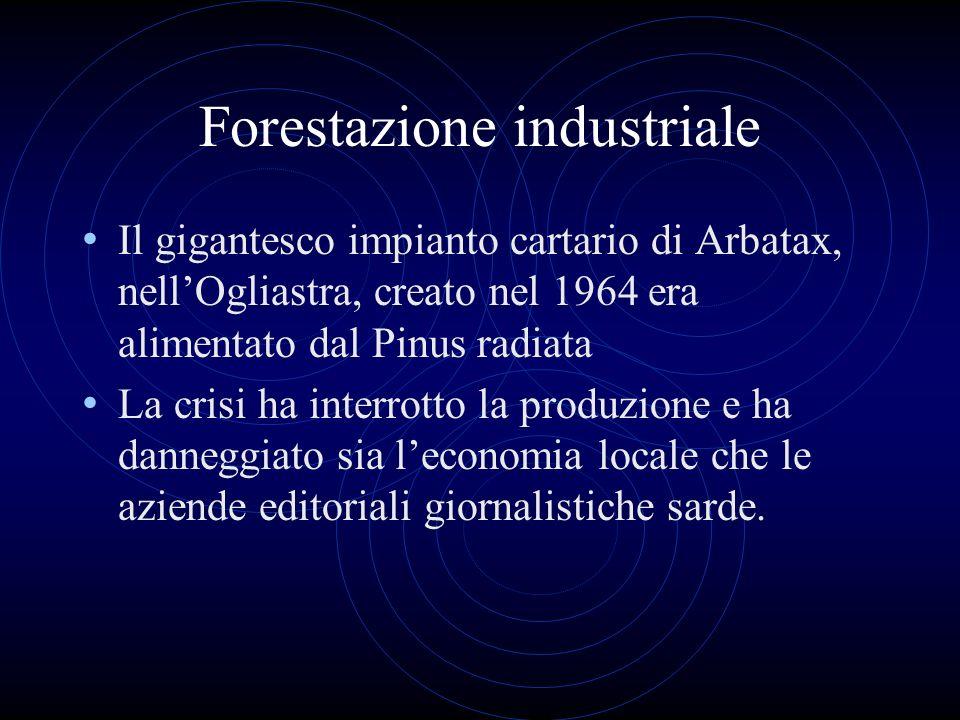 Forestazione industriale Il gigantesco impianto cartario di Arbatax, nellOgliastra, creato nel 1964 era alimentato dal Pinus radiata La crisi ha inter