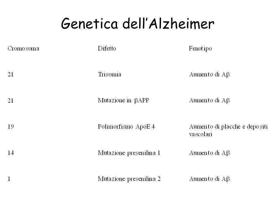 Genetica dellAlzheimer