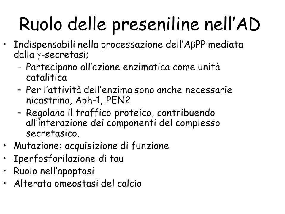 Ruolo delle preseniline nellAD Indispensabili nella processazione dellA PP mediata dalla -secretasi; –Partecipano allazione enzimatica come unità cata