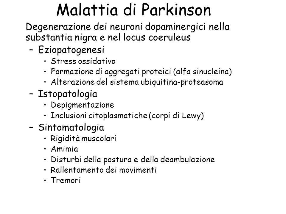 Malattia di Parkinson Degenerazione dei neuroni dopaminergici nella substantia nigra e nel locus coeruleus –Eziopatogenesi Stress ossidativo Formazion