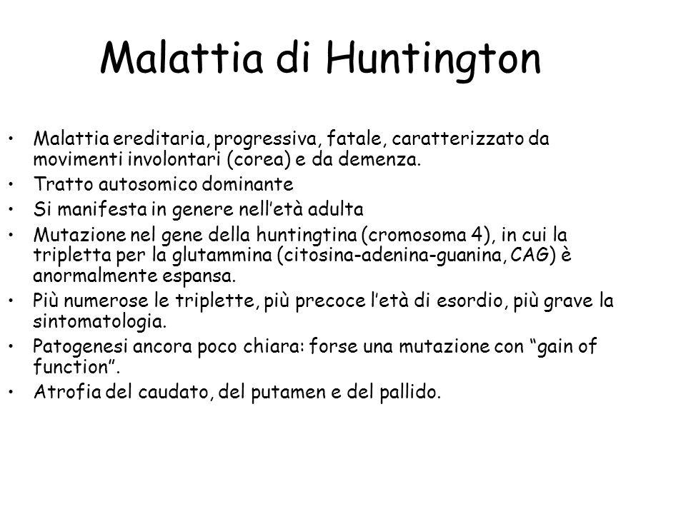 Malattia di Huntington Malattia ereditaria, progressiva, fatale, caratterizzato da movimenti involontari (corea) e da demenza. Tratto autosomico domin