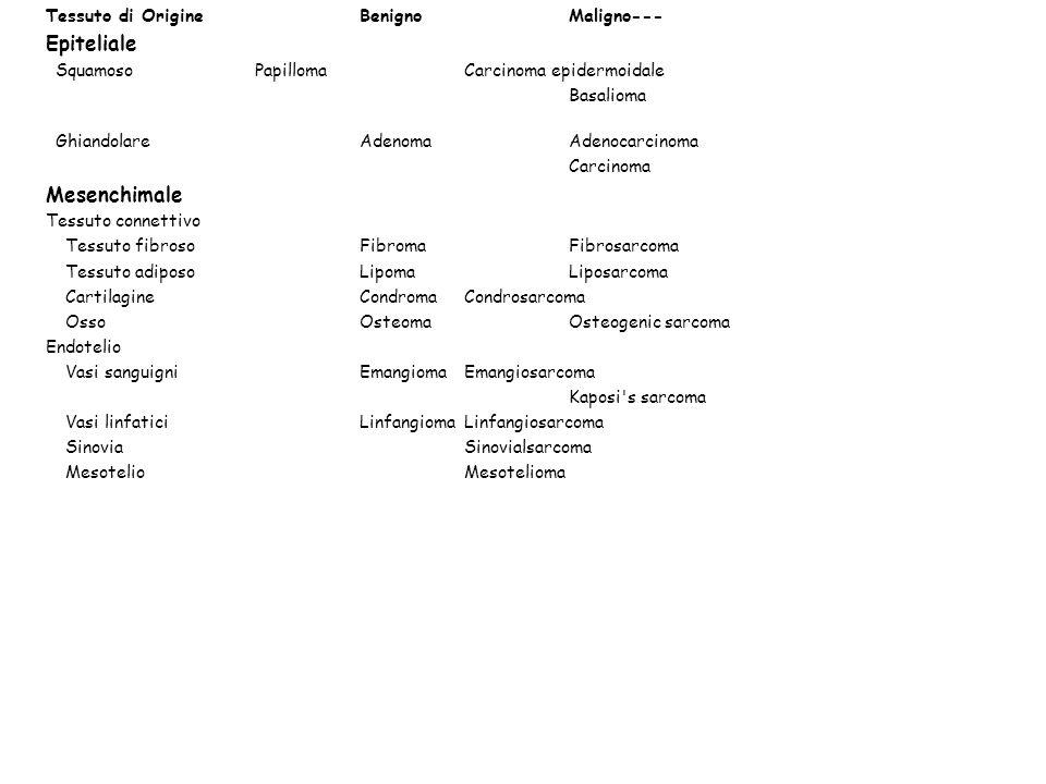 Tessuto di OrigineBenignoMaligno--- Epiteliale SquamosoPapillomaCarcinoma epidermoidale Basalioma GhiandolareAdenomaAdenocarcinoma Carcinoma Mesenchim