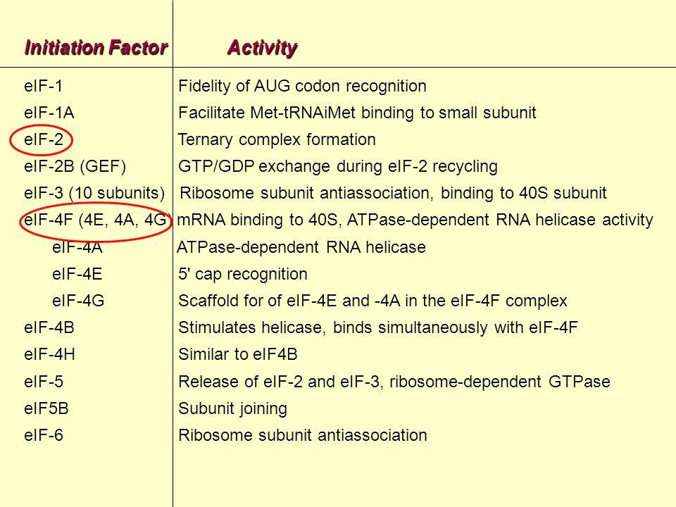 pUp UUUCCUUUU AUG Inizio di traduzione nellmRNA di poliovirus AUG IRES= Internal ribosome entry site