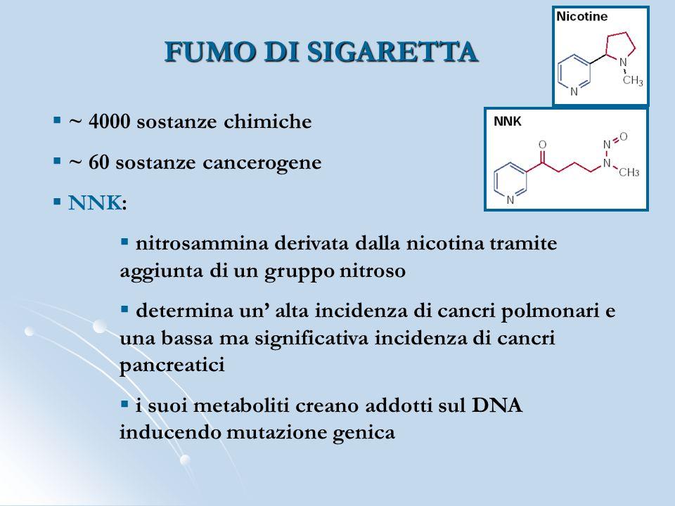 FUMO DI SIGARETTA ~ 4000 sostanze chimiche ~ 60 sostanze cancerogene NNK: nitrosammina derivata dalla nicotina tramite aggiunta di un gruppo nitroso d