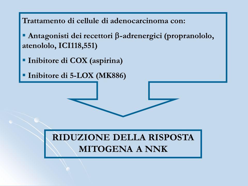 Trattamento di cellule di adenocarcinoma con: Antagonisti dei recettori -adrenergici (propranololo, atenololo, ICI118,551) Inibitore di COX (aspirina)