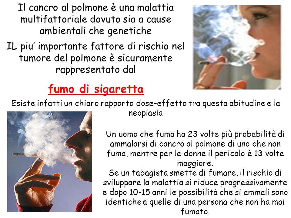 IL piu importante fattore di rischio nel tumore del polmone è sicuramente rappresentato dal fumo di sigaretta Esiste infatti un chiaro rapporto dose-e