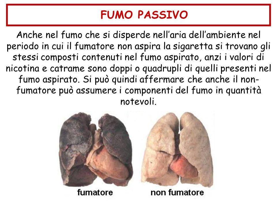 Anche nel fumo che si disperde nellaria dellambiente nel periodo in cui il fumatore non aspira la sigaretta si trovano gli stessi composti contenuti n