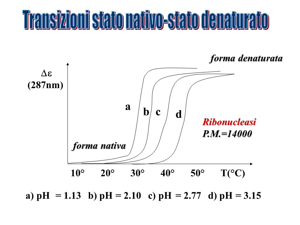 Le proteine tendono ad essere più stabili intorno al punto isoelettrico (carica nulla).