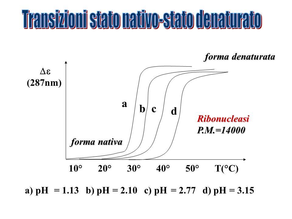 a bc d 10°20°30°40°50°T(°C) (287nm) a) pH= 1.13 b) pH= 2.10 c) pH= 2.77 d) pH= 3.15 forma nativa forma denaturata RibonucleasiP.M.=14000