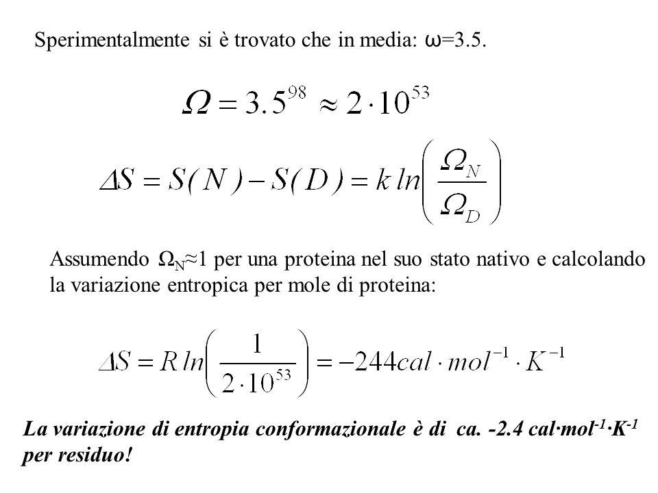 Sperimentalmente si è trovato che in media: ω =3.5. Assumendo Ω N 1 per una proteina nel suo stato nativo e calcolando la variazione entropica per mol