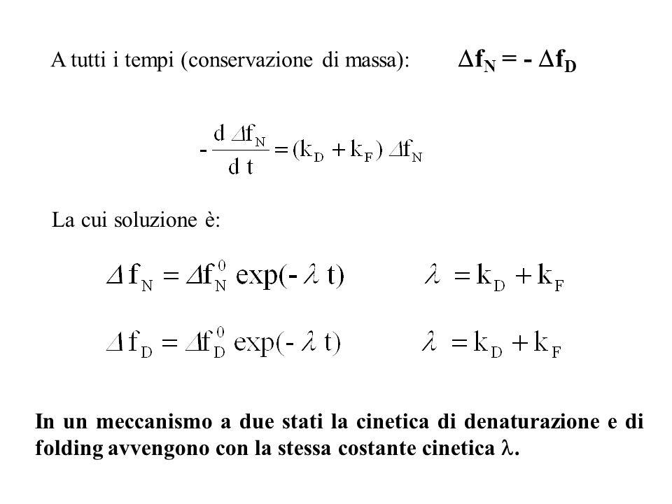 A tutti i tempi (conservazione di massa): f N = - f D La cui soluzione è: In un meccanismo a due stati la cinetica di denaturazione e di folding avven