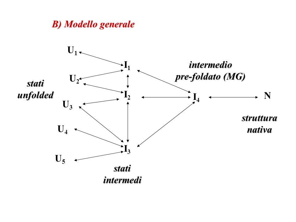 U1U1 U2U2 U3U3 U4U4 U5U5 I1I1 I2I2 I3I3 I4I4 N B) Modello generale statiunfolded statiintermedi intermedio pre-foldato (MG) strutturanativa