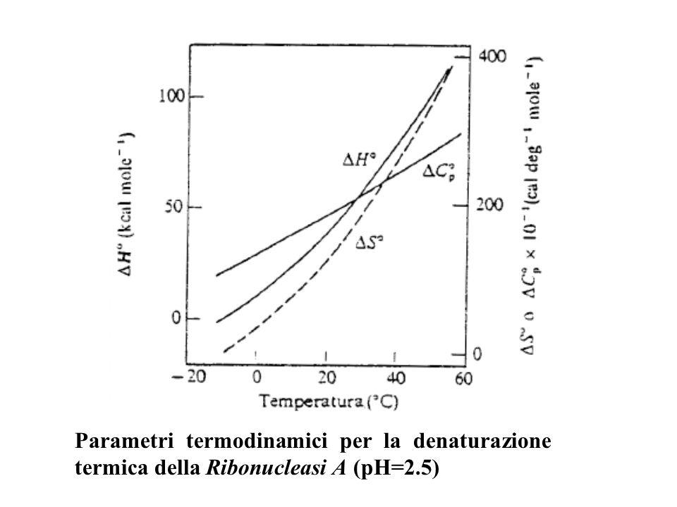 G°(D) G°(N) 20° 40° 60° 80° T(°C) TmTm TmTm ΔG°= G°(D)-G°(N)