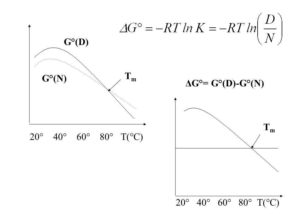 Le caratteristiche principali di uno stato molten globule sono: (i)le dimensioni totali di questo stato sono minori di quelle associate ad un gomitolo statistico e sono solo lievemente maggiori di quelle dello stato nativo; (ii) il contenuto di struttura secondaria è confrontabile con quello dello stato nativo; (iii) le interazioni con il solvente (cioè la superficie esposta al solvente) sono molto maggiori di quelle dello stato nativo, ma molto minori dello stato completamente denaturato; (iv) linterconversione molten globule stato denaturato è rapida e non cooperativa, mentre linterconversione molten globule stato nativo è lenta e cooperativa.