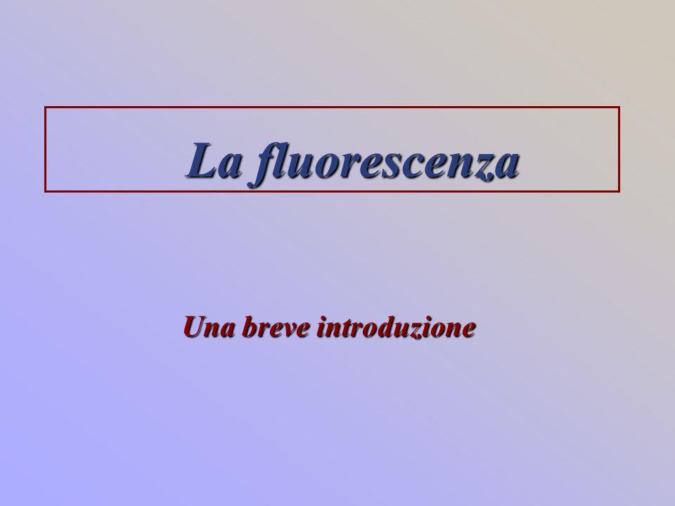 La fluorescenza Una breve introduzione