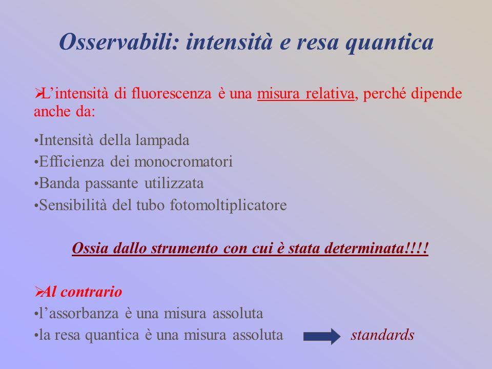 Osservabili: intensità e resa quantica Lintensità di fluorescenza è una misura relativa, perché dipende anche da: Intensità della lampada Efficienza d