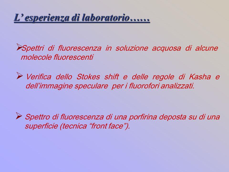 L esperienza di laboratorio…… Spettri di fluorescenza in soluzione acquosa di alcune molecole fluorescenti Verifica dello Stokes shift e delle regole