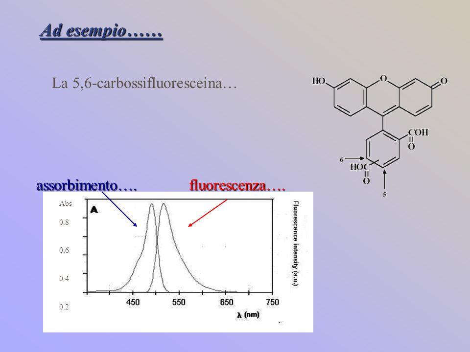 Ad esempio…… La 5,6-carbossifluoresceina… Abs 0.8 0.6 0.4 0.2 assorbimento….fluorescenza….