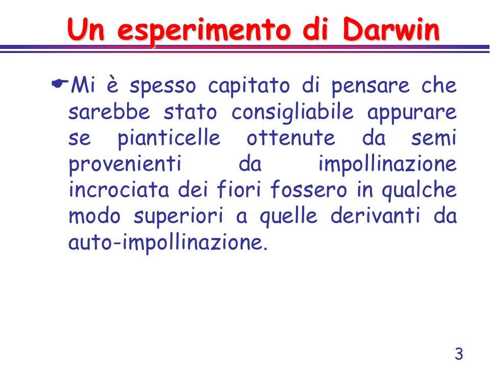 3 Un esperimento di Darwin Mi è spesso capitato di pensare che sarebbe stato consigliabile appurare se pianticelle ottenute da semi provenienti da imp
