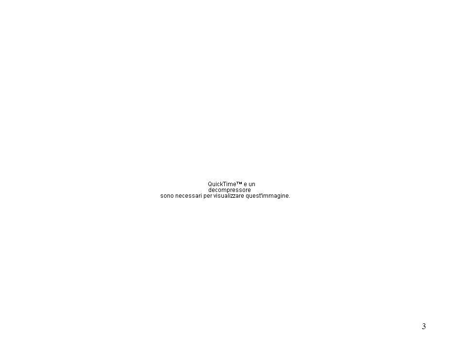 24 Togaviridae Group IV: ssRNA (+) Famiglia Genere Specie Ospite Togaviridae Alphavirus * virus SindbisVertebrati e Invertebrati Rubivirus virus della Rosoliauomo Particella di forma sferica (70 nm) Capside icosaedrico involucro Genoma a RNAss di polarita positiva 9.7-11.7 kb (5cap e 3poly-A) *trasmessi da artropodi: Aedes-Culex