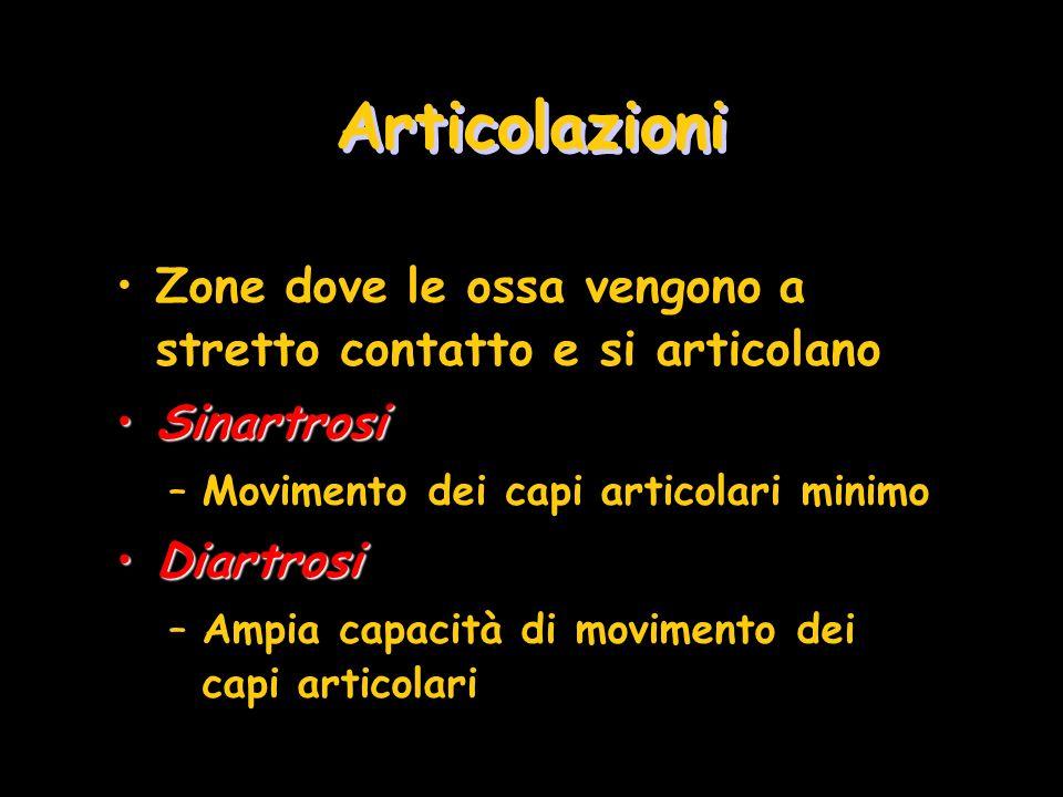 Articolazioni Zone dove le ossa vengono a stretto contatto e si articolano SinartrosiSinartrosi –Movimento dei capi articolari minimo DiartrosiDiartro