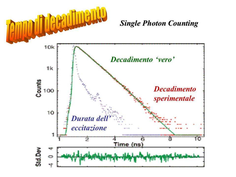 Durata dell eccitazione Decadimento sperimentale Decadimento vero Single Photon Counting