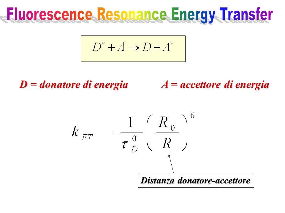 D = donatore di energia A = accettore di energia Distanza donatore-accettore