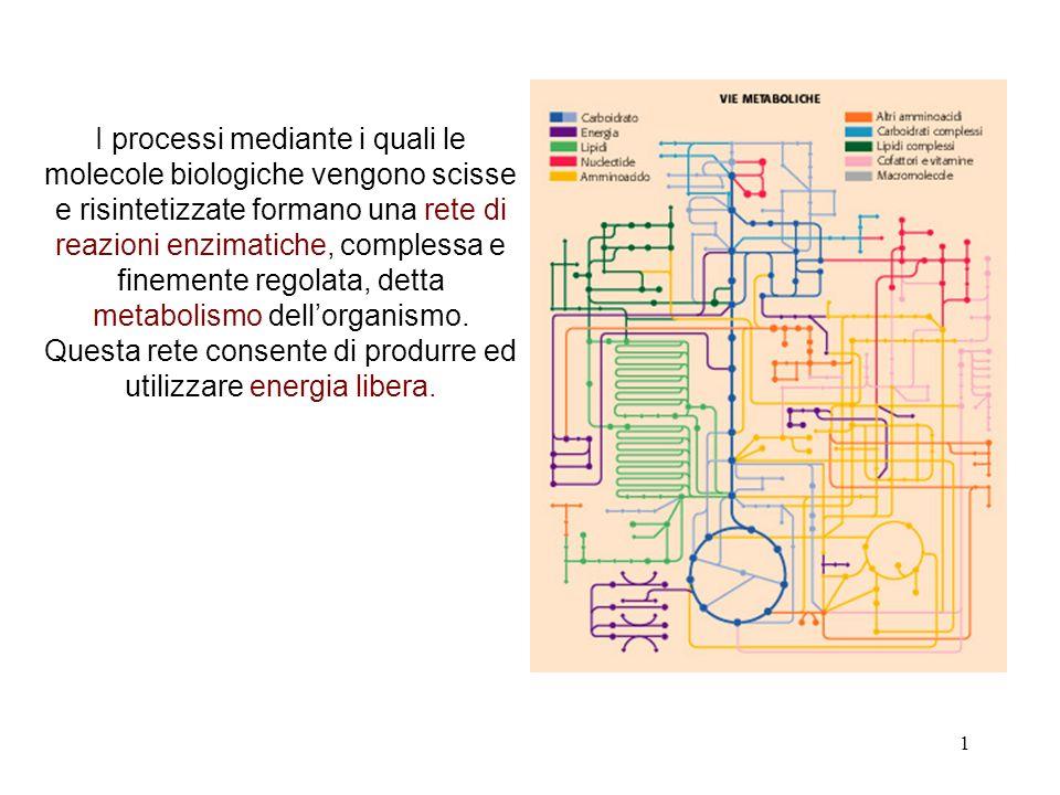 1 I processi mediante i quali le molecole biologiche vengono scisse e risintetizzate formano una rete di reazioni enzimatiche, complessa e finemente regolata, detta metabolismo dellorganismo.