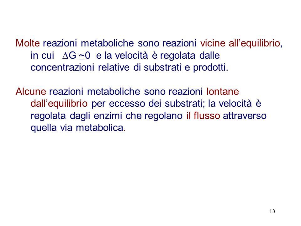 13 Molte reazioni metaboliche sono reazioni vicine allequilibrio, in cui G ~0 e la velocità è regolata dalle concentrazioni relative di substrati e pr