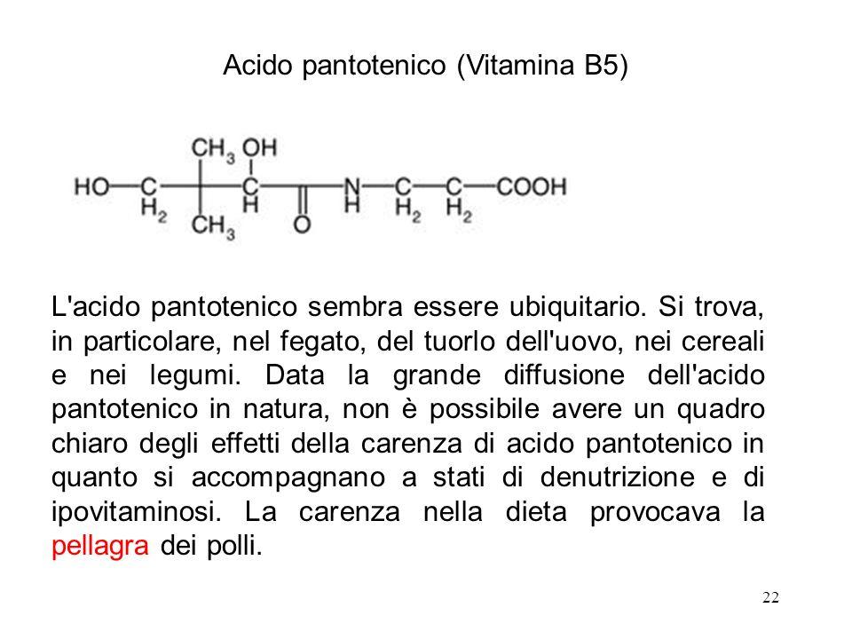 22 Acido pantotenico (Vitamina B5) L'acido pantotenico sembra essere ubiquitario. Si trova, in particolare, nel fegato, del tuorlo dell'uovo, nei cere