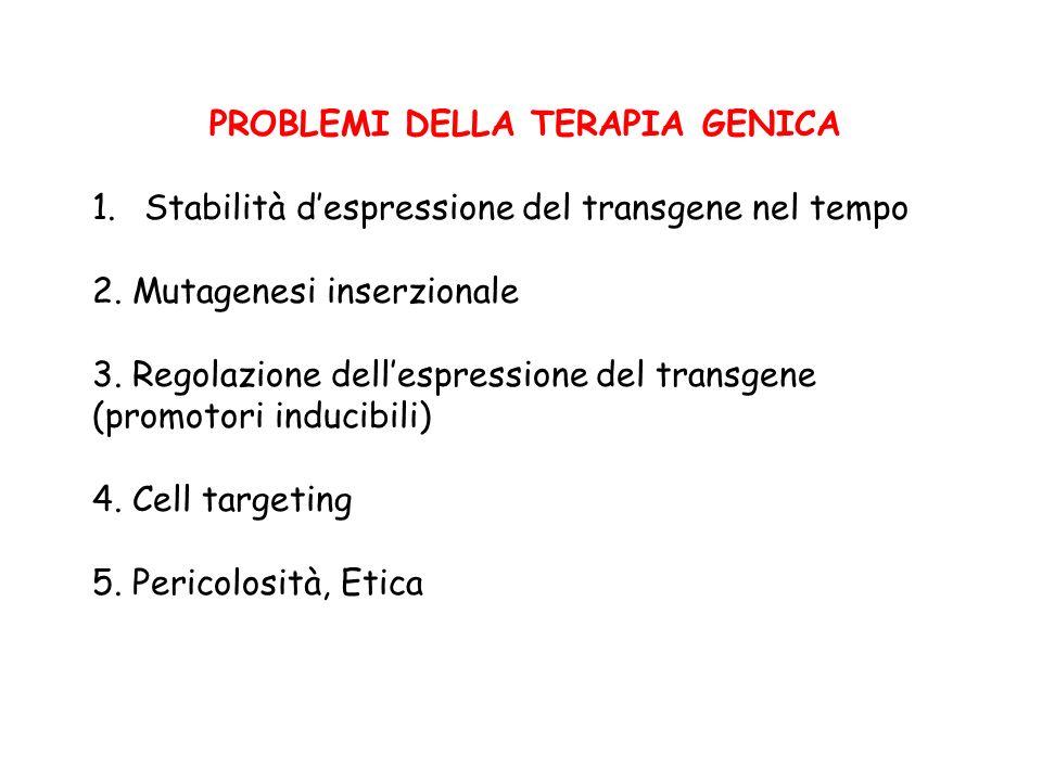 PROBLEMI DELLA TERAPIA GENICA 1.Stabilità despressione del transgene nel tempo 2. Mutagenesi inserzionale 3. Regolazione dellespressione del transgene