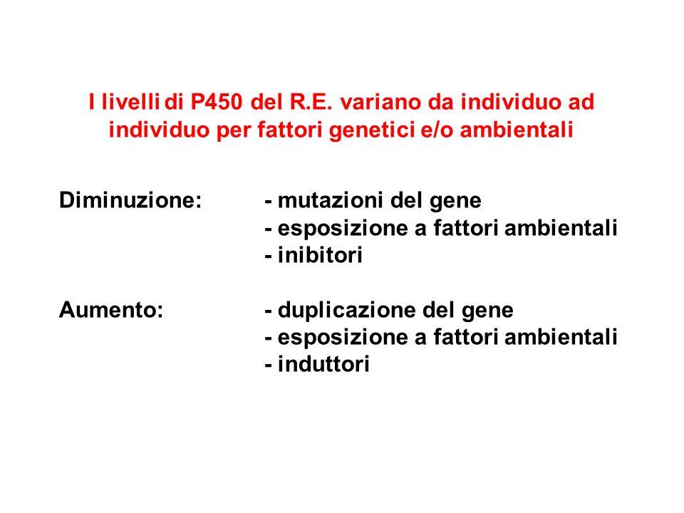 I livelli di P450 del R.E. variano da individuo ad individuo per fattori genetici e/o ambientali Diminuzione: - mutazioni del gene - esposizione a fat
