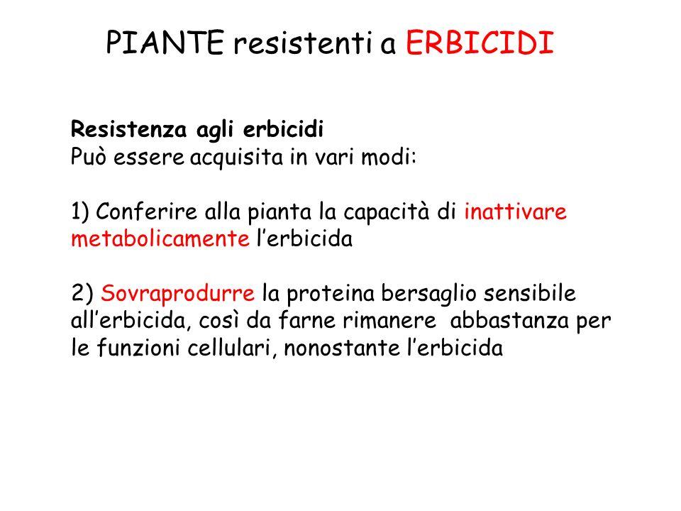 PIANTE resistenti a ERBICIDI Resistenza agli erbicidi Può essere acquisita in vari modi: 1) Conferire alla pianta la capacità di inattivare metabolica