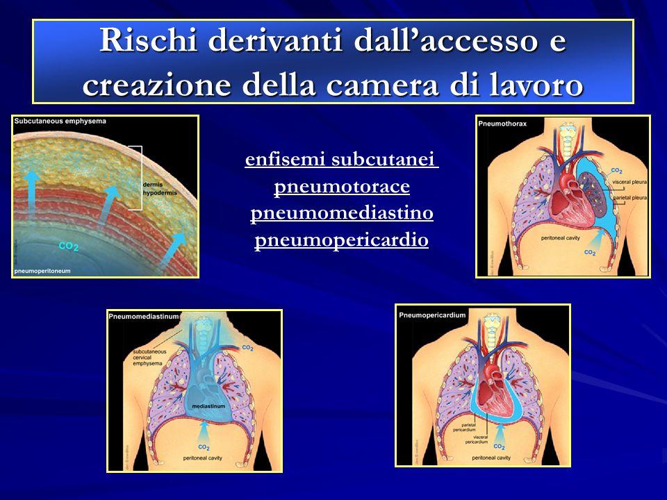 enfisemi subcutanei pneumotorace pneumomediastino pneumopericardio Rischi derivanti dallaccesso e creazione della camera di lavoro