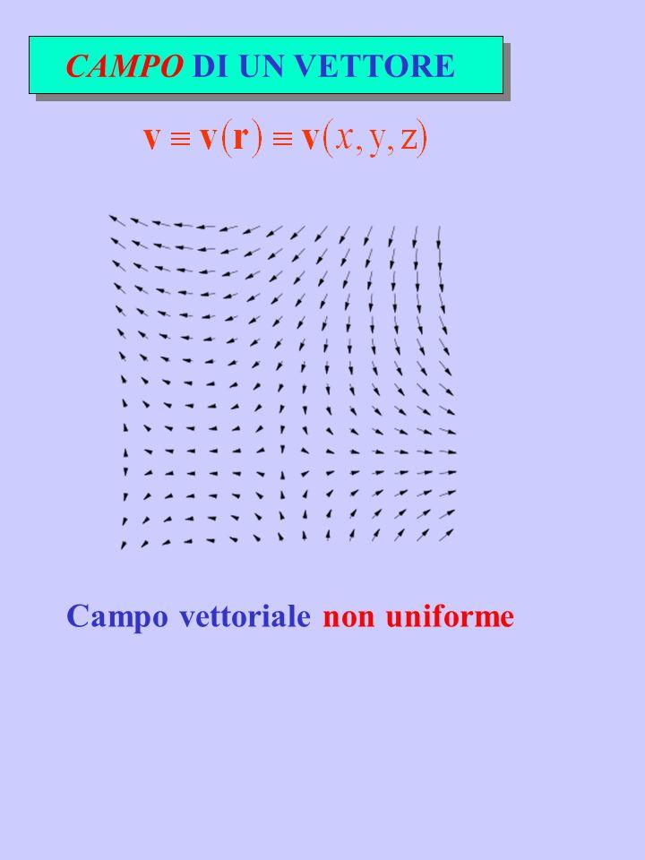 CAMPO DI UN VETTORE Campo vettoriale non uniforme