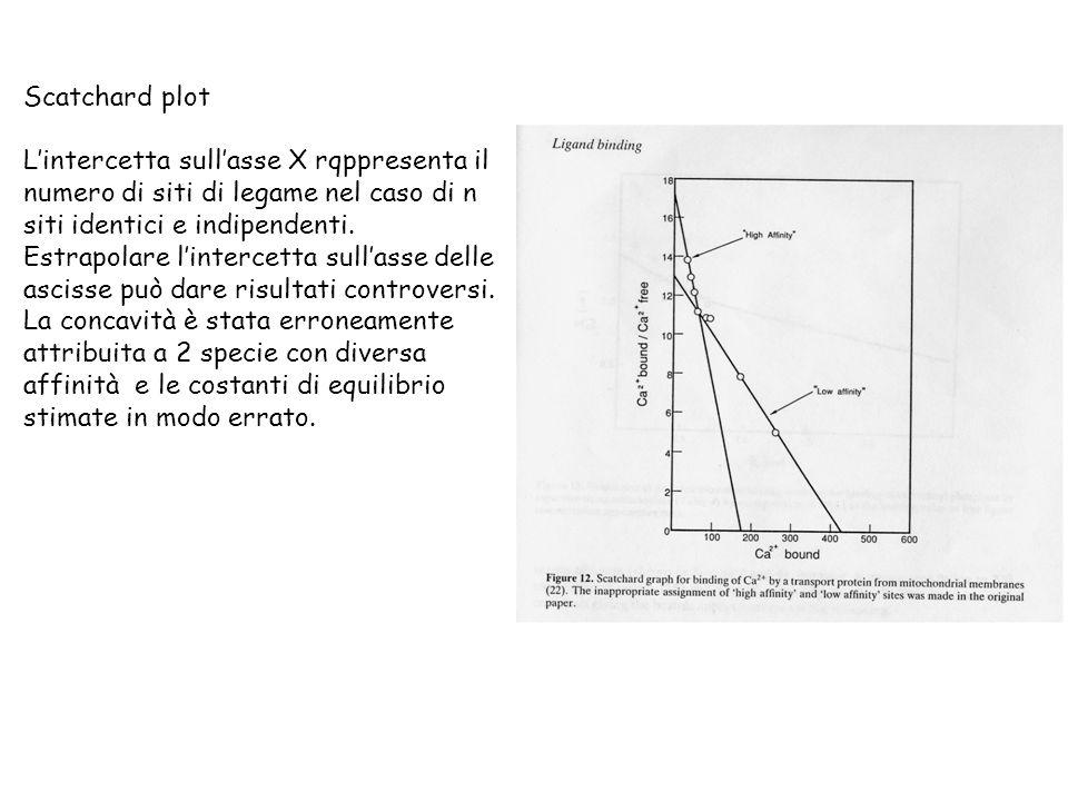 Scatchard plot Lintercetta sullasse X rqppresenta il numero di siti di legame nel caso di n siti identici e indipendenti. Estrapolare lintercetta sull