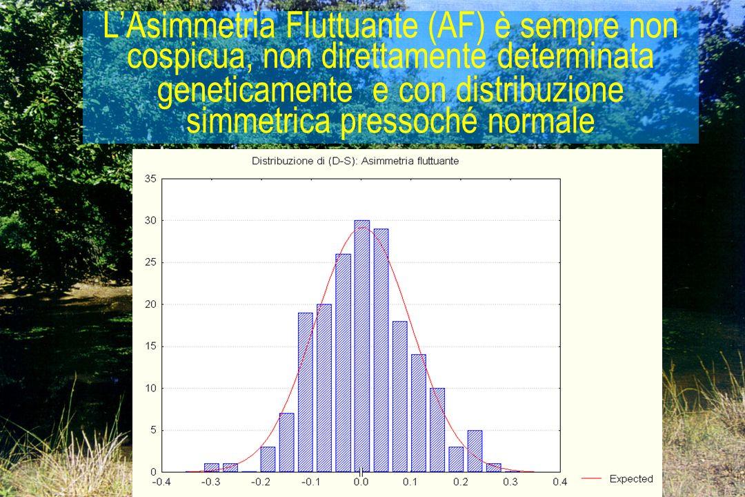 16 LAsimmetria Fluttuante (AF) è sempre non cospicua, non direttamente determinata geneticamente e con distribuzione simmetrica pressoché normale