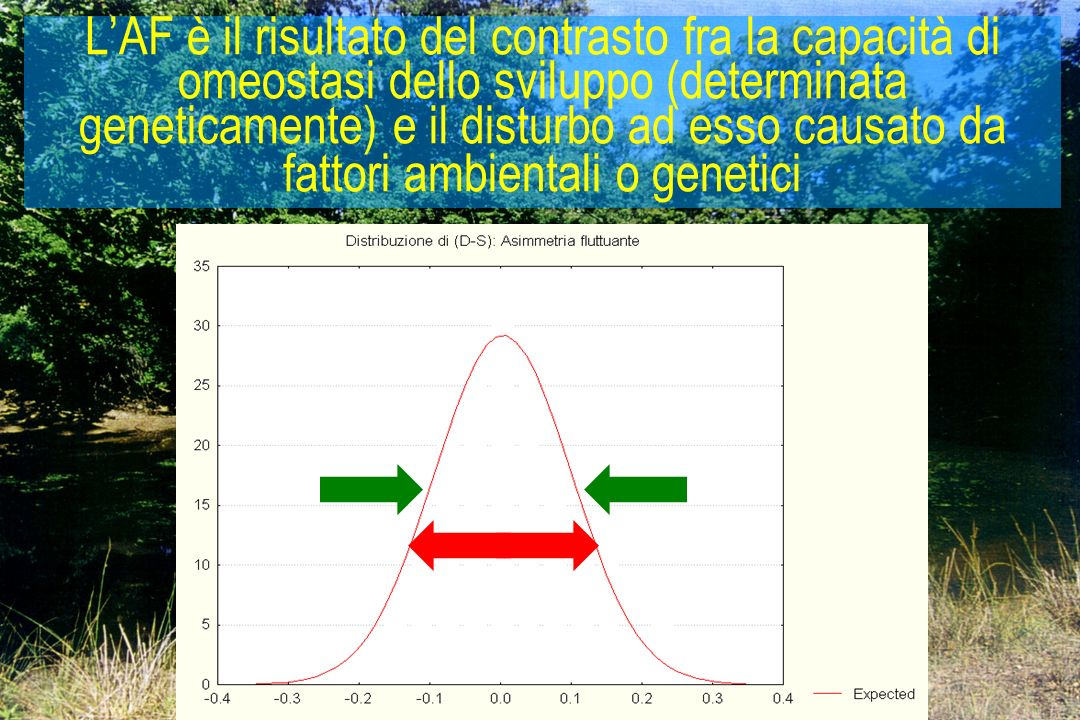 17 LAF è il risultato del contrasto fra la capacità di omeostasi dello sviluppo (determinata geneticamente) e il disturbo ad esso causato da fattori a