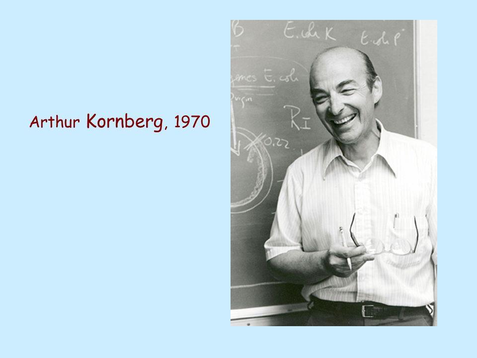 Arthur Kornberg, 1970