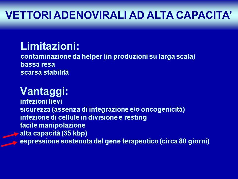 Vantaggi: infezioni lievi sicurezza (assenza di integrazione e/o oncogenicità) infezione di cellule in divisione e resting facile manipolazione alta c