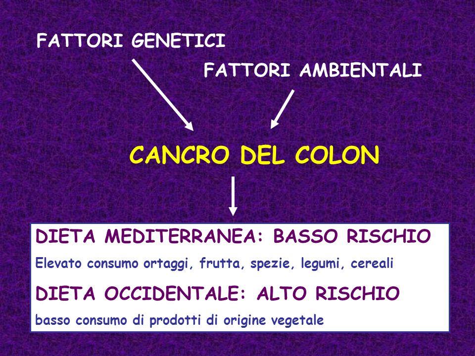 CANCRO DEL COLON FATTORI GENETICI DIETA MEDITERRANEA: BASSO RISCHIO Elevato consumo ortaggi, frutta, spezie, legumi, cereali DIETA OCCIDENTALE: ALTO R