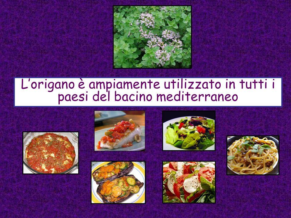 Lorigano è ampiamente utilizzato in tutti i paesi del bacino mediterraneo