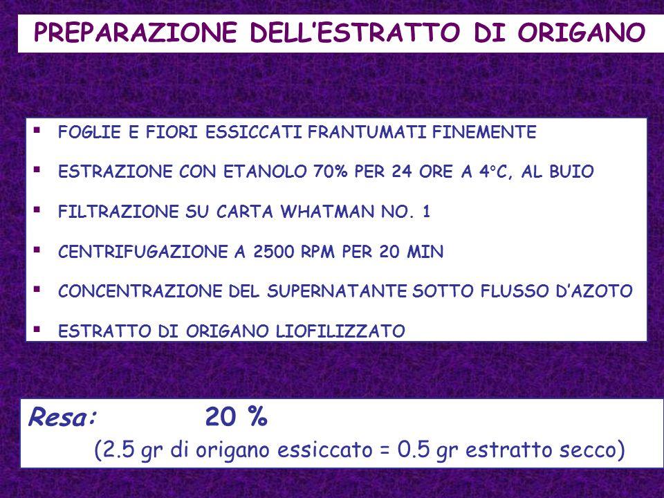 FOGLIE E FIORI ESSICCATI FRANTUMATI FINEMENTE ESTRAZIONE CON ETANOLO 70% PER 24 ORE A 4°C, AL BUIO FILTRAZIONE SU CARTA WHATMAN NO. 1 CENTRIFUGAZIONE