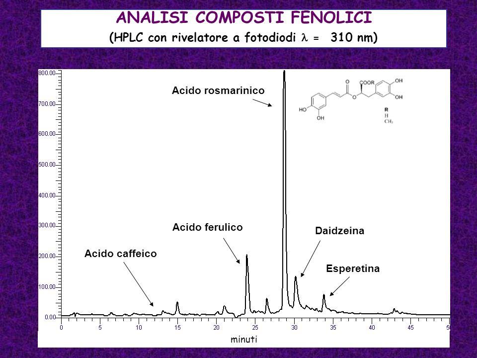 ANALISI COMPOSTI FENOLICI (HPLC con rivelatore a fotodiodi = 310 nm) minuti Acido caffeico Acido rosmarinico Acido ferulico Daidzeina Esperetina