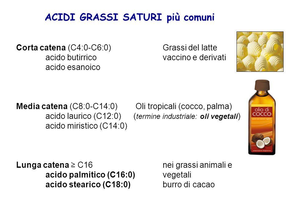 ACIDI GRASSI SATURI più comuni Corta catena (C4:0-C6:0) Grassi del latte acido butirrico vaccino e derivati acido esanoico Media catena (C8:0-C14:0) O