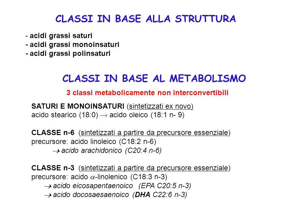 - acidi grassi saturi - acidi grassi monoinsaturi - acidi grassi polinsaturi CLASSI IN BASE ALLA STRUTTURA 3 classi metabolicamente non interconvertib